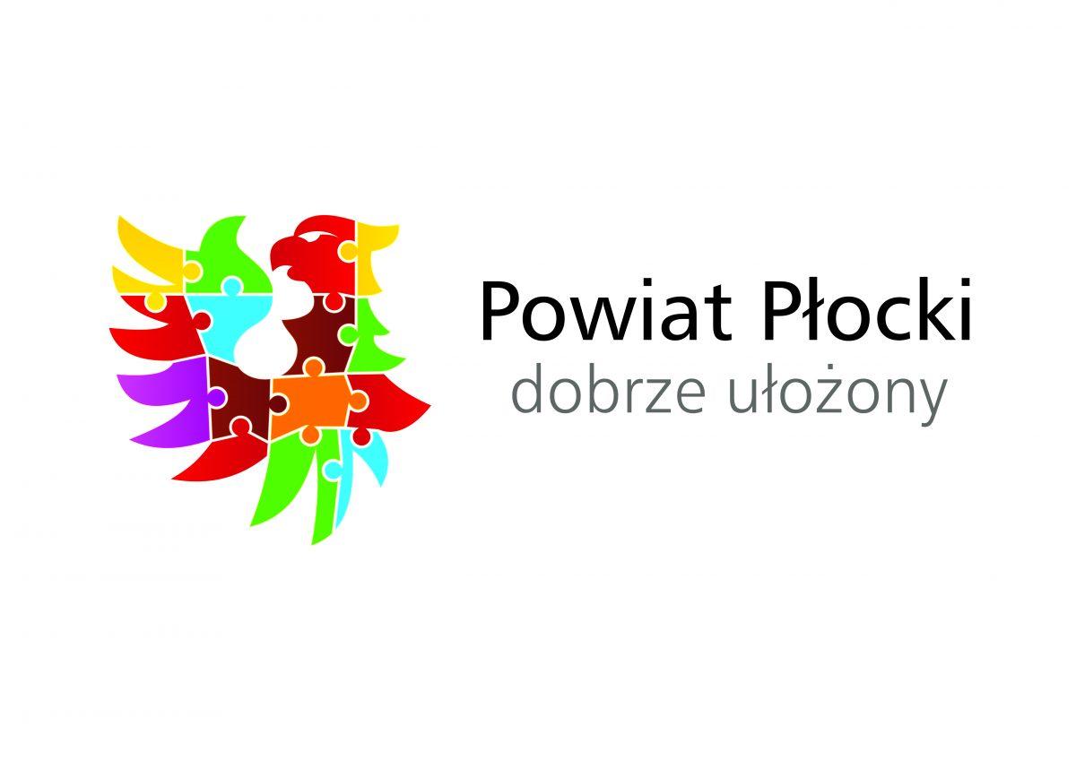 Strategia Elektromobilności Powiatu Płockiego na lata 2021-2036 – Ankieta