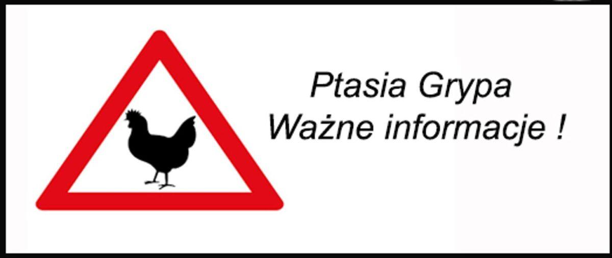 Nowe ogniska wysoce zjadliwej grypy ptaków (HPAI) – działania Wojewody